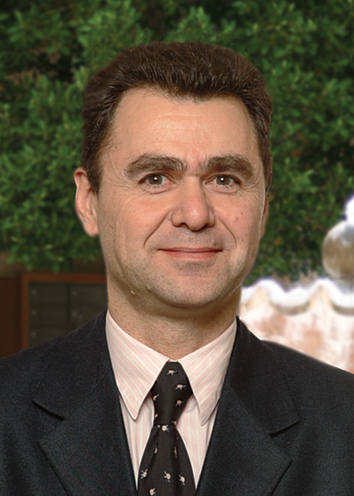 Yves Hamon is a Member of the Board